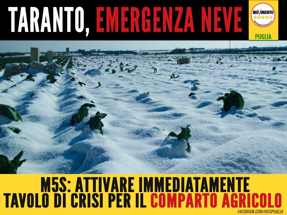 Taranto_emergenza_neve