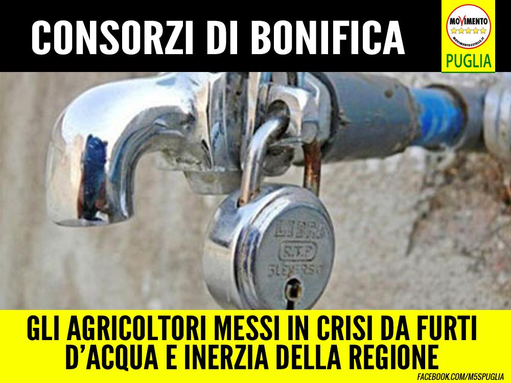"""Consorzi di Bonifica. Galante (M5S): """"Inaccettabile che la Regione non si occupi dei furti d'acqua"""""""