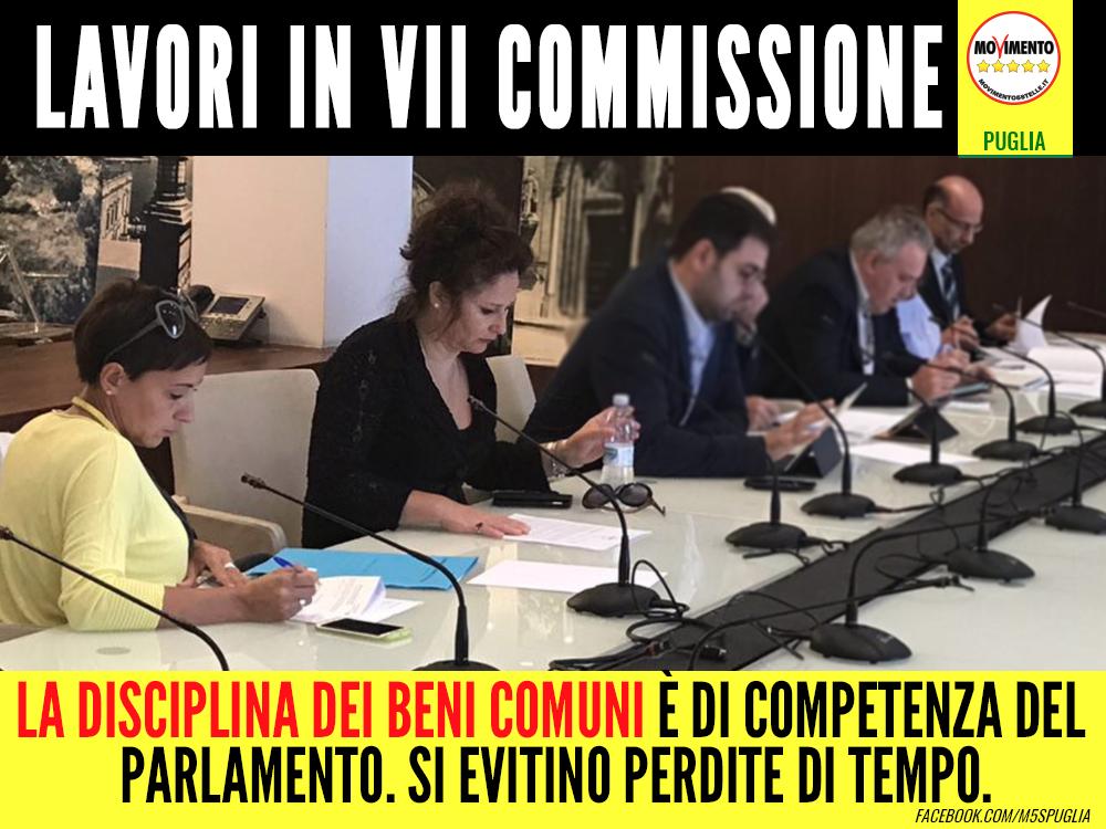 lavori-vii-commissione