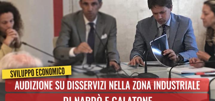 Audizione su disservizi nella Z.I. di Nardò e Galatone. Casili: Regione controlli operatività del Consorzio Asi di Lecce - m5stelle.com - notizie m5s