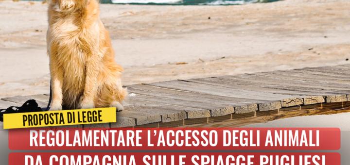 Regolamentare l'accesso degli animali da compagnia sulle spiagge pugliesi. Bozzetti presenta proposta di legge - M5S notizie m5stelle.com