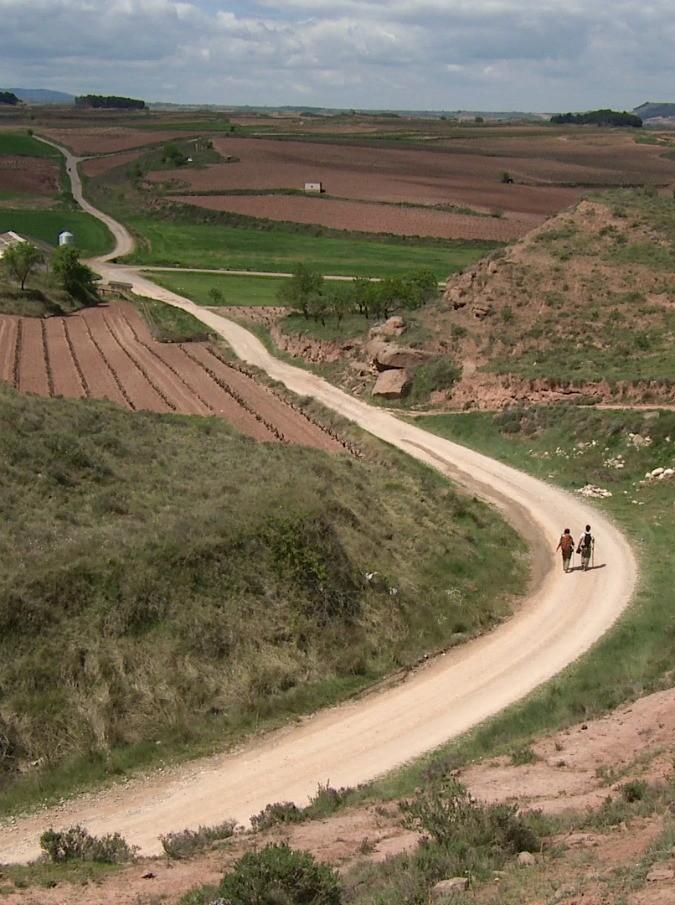 """Esclusione della provincia di Foggia dall'itinerario della nuova via Francigena. M5S: """"La Regione corregga l'errore"""""""