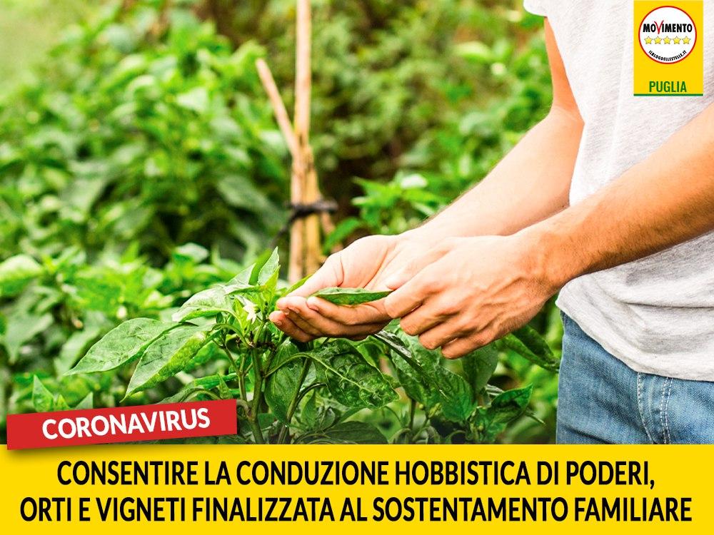 """Coronavirus. M5S: """"Consentire la conduzione hobbistica di poderi, orti e vigneti finalizzata al sostentamento familiare"""""""