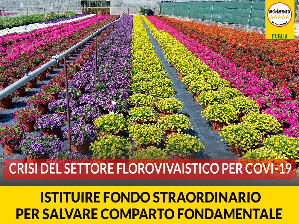"""Crisi del settore florovivaistico per Covi-19. Trevisi (M5S): """"Istituire fondo straordinario per salvare comparto fondamentale"""""""