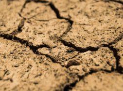 siccità (1)