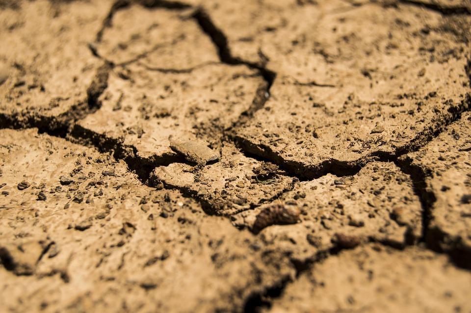 Consorzi di bonifica. M5S: Allarme siccità nei campi. Necessario pianificare interventi per potenziare le infrastrutture irrigue