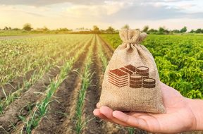 fondi-europei-agricoltura-territorio