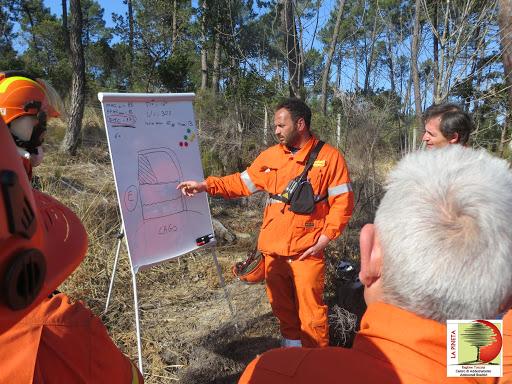 Approvata in Commissione Ambiente la proposta di legge per l'applicazione pianificata del fuoco prescritto. Casili: Misura efficace per prevenire incendi boschivi